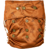 Natural Snap-In Goji cloth Diaper